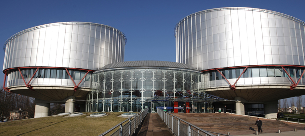 The European Court of Human Rights: functioning, procedure for applying to the Court and its case-law